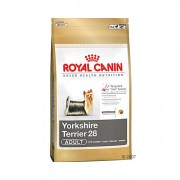 royal_canin_york_
